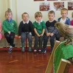 Birds of prey visit school